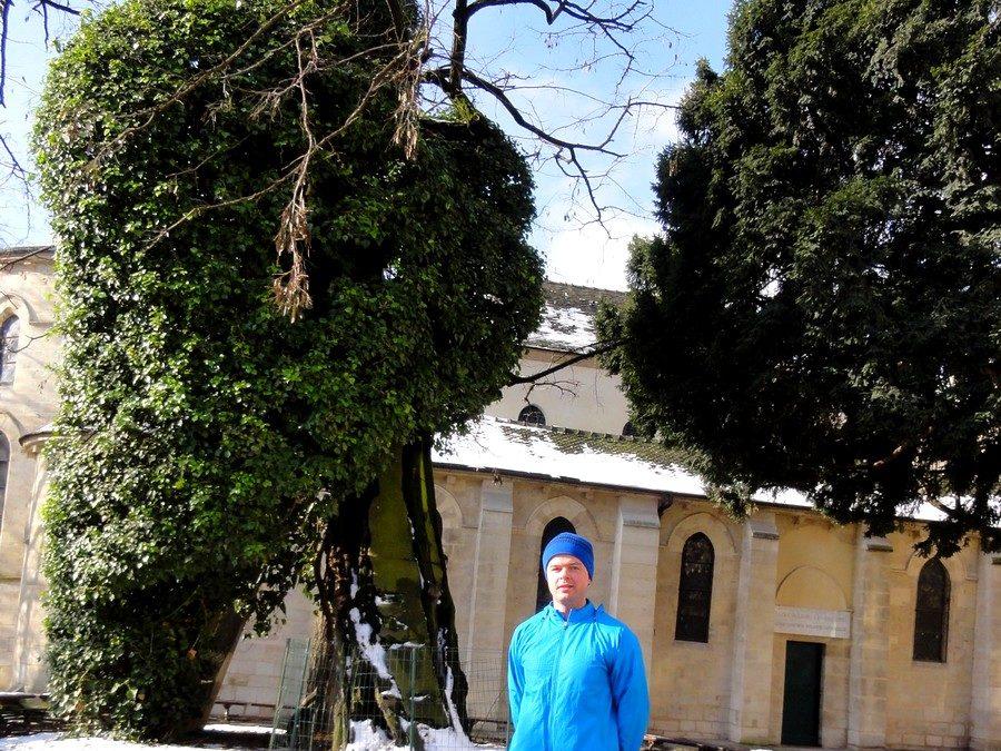 Devant le plus vieil arbre de Paris avec Michael