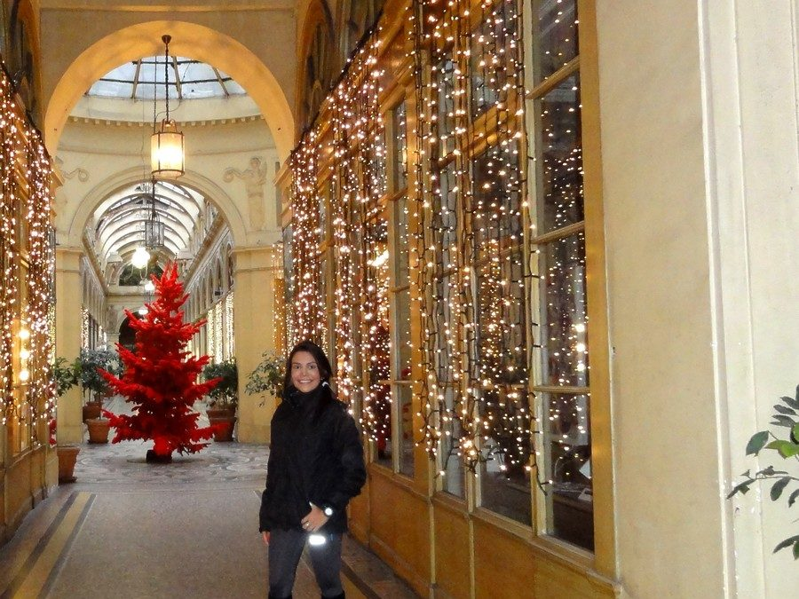 A sports and cultural tour of Paris with Ingrid at Christmas